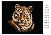 """Схема для частичной вышивки бисером """"Тигр"""""""