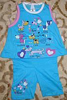 """Костюмчик футболка+шорты""""собачки"""" 6-12 мес. голубой"""