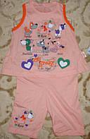 """Костюмчик футболка+шорты""""собачки"""" 6-12 мес. оранж"""