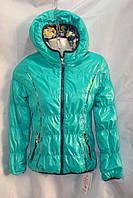 Курточка  детская для девочек, фото 1