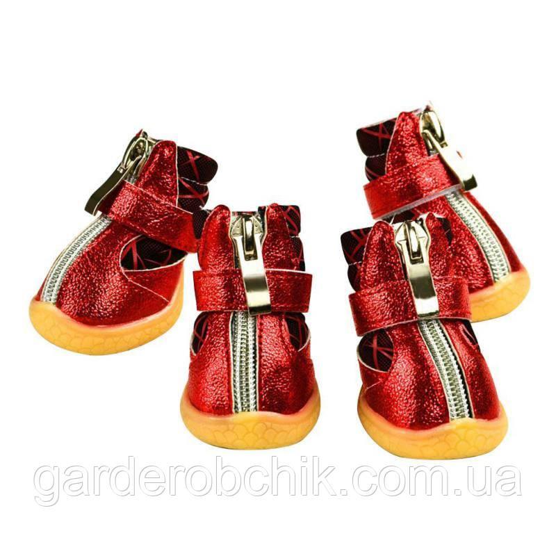 """Сапоги, ботинки  для собаки """"Блестящие Red"""". Обувь для животных"""