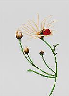 """Набор для вышивания крестиком (цветы) """"Общение"""""""