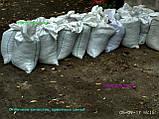Чернозем в мешках Киев Земля в мешках Киев Грунт плодородный Чернозем, фото 4