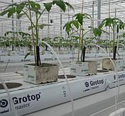Система капельного полива для теплиц с малообъемной технологий выращивания
