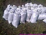 Чорнозем, земля для квітів Київ Земля для троянд Грунт для квітів Київ, фото 2