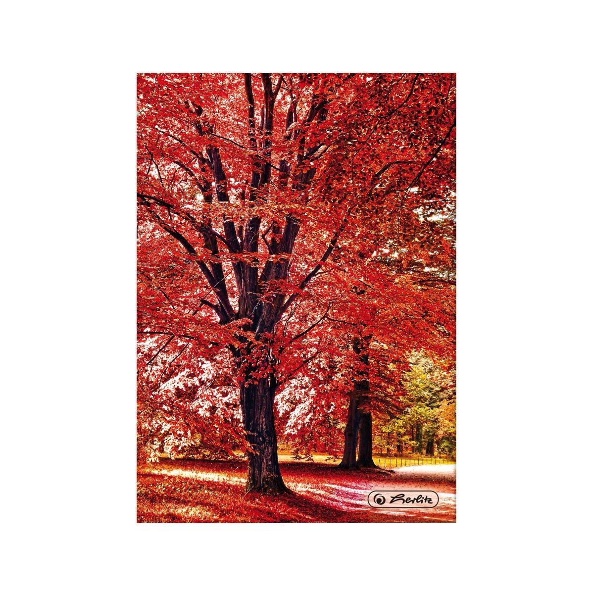 Блокнот Herlitz А5 96 листов клетка Autumn Delight Trees