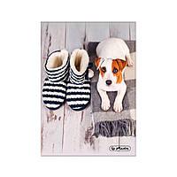 Блокнот Herlitz А5 96 листов клетка Winter Cozy Doggie