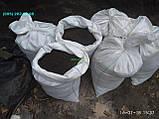 Чернозем в мешках  Киев Святошино Борщаговка Почва Грунт в мешках, фото 3