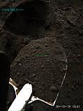 Чернозем в мешках  Киев Святошино Борщаговка Почва Грунт в мешках, фото 4