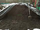 Чернозем купить в Киеве Грунт в мешках Киев Грунт для огорода, фото 5