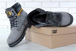 Женские зимние ботинки Caterpillar CAT Grey с мехом, фото 3