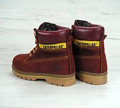 Женские зимние ботинки Caterpillar CAT Bordo с мехом, фото 2