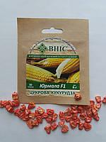 Насіння цукрової кукурудзи Юрмала 100 шт