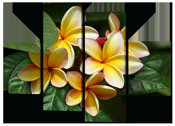Модульная картина Interno Эко кожа Франжипани 166х123см (А300XL)