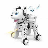 Інтерактивна іграшка AeiCheng My Lovely Puppy робот-собака на р/к з проектором Білий (SUN2988), фото 1