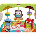 Развивающий коврик Игровой центр Растем вместе 3 в 1 Fisher Price Newborn to Toddler Gym, фото 5