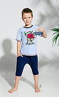 Пижама Taro 104-116 см (2215-02 Alan)