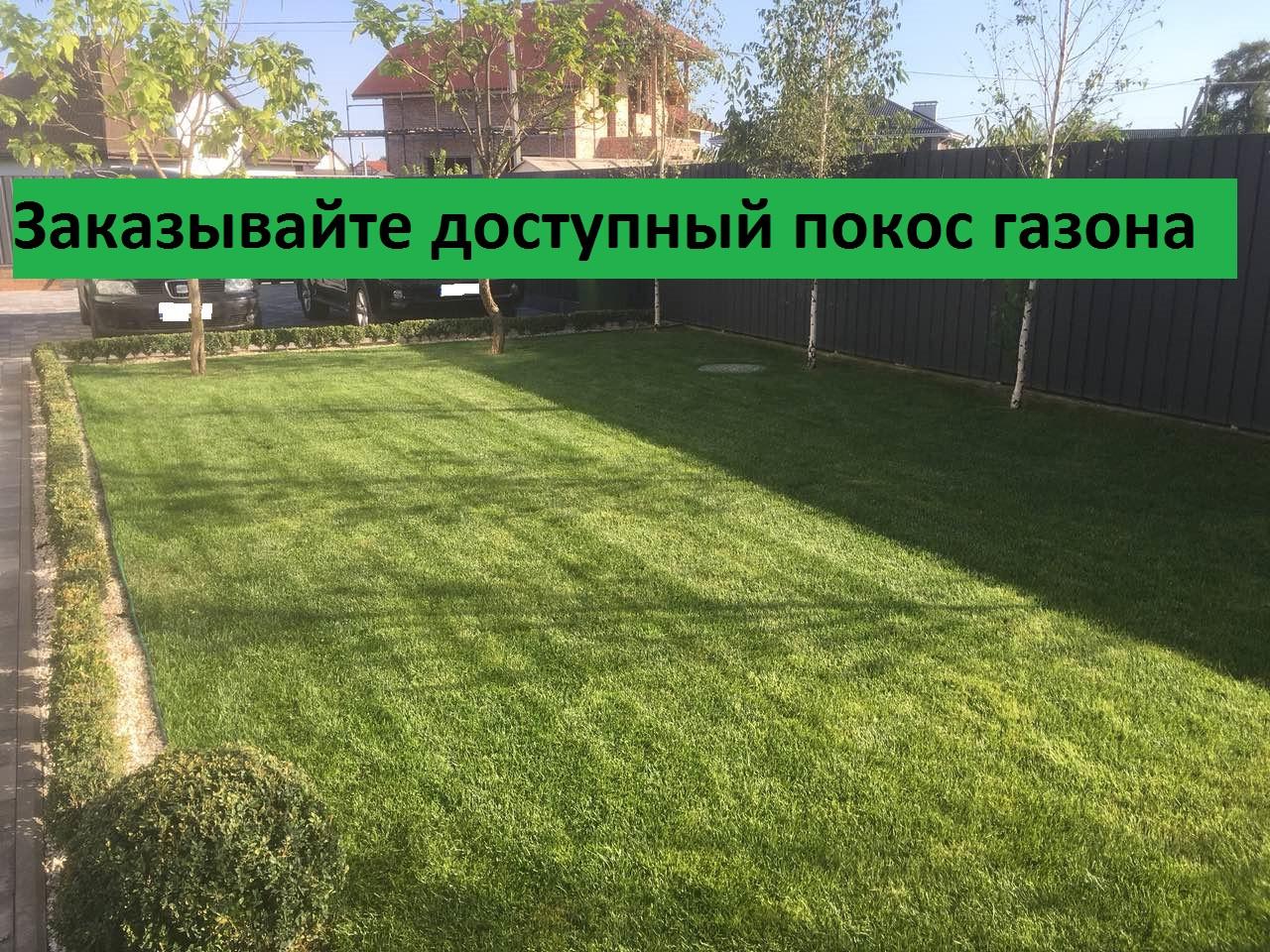 Стрижка газонов в Украине. Сравнить цены 1b0ff89252be7