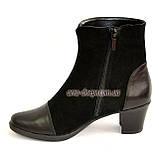 Женские демисезонные ботинки на невысоком устойчивом каблуке, натуральная кожа и замша, фото 3