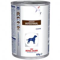 Влажный корм (Роял Канин) Royal Canin Gastro Intestinal для собак при нарушении пищеварения 0.42 кг