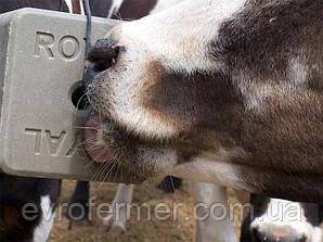 Соль-лизунец CALPHOS BLOCK 3 кг. для высокопродуктивных молочных коров и коз