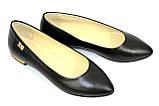 Женские кожаные туфли-балетки с заостренным носком., фото 10