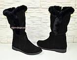 Сапоги черные демисезонные женские замшевые, с меховой опушкой, на низком ходу, фото 4