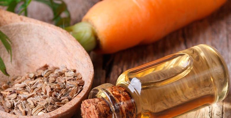 Масло семян Моркови - волшебные свойства для кожи!