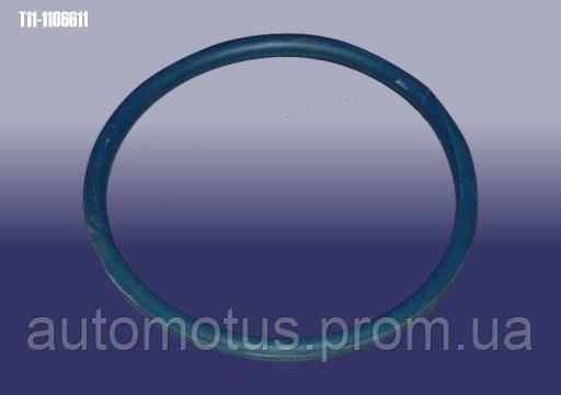 Кольцо уплотнительное  топливного насоса