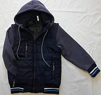 Детская демисезонная  куртка оптом на 2-6 лет 98