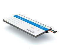 Аккумулятор Craftmann для Samsung GT-P1000 Galaxy TAB (SP4960C3A 3600 mAh)