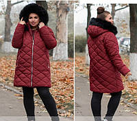 Женская куртка Евро - зима, бордо  50-62р