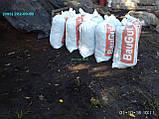 Чернозем перегной Ирпень Буча чернозем в мешках Ирпень перегной Буча купить, фото 4