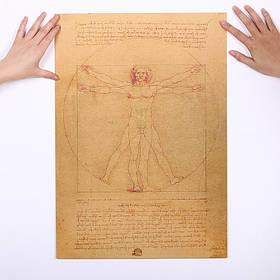 Плакат постер картина Витрувианский человек ретро винтаж