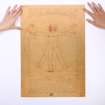 Плакат постер картина Витрувианский человек ретро винтаж, фото 2