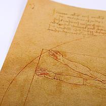 Плакат постер картина Витрувианский человек ретро винтаж, фото 3