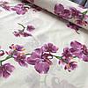 Бязь Люкс с орхидеями на бежевом фоне, ширина 220 см
