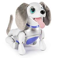 Інтерактивна собака робот Spin Master Zoomer Playful Pup, Responsive Robotic Dog  6042065
