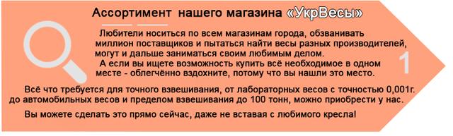 Весы электронные от 0,0001 г, до 100 тонн.