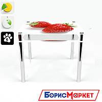 Обеденный стол стеклянный (фотопечать) Квадратный с проходящей полкой Red berry от БЦ-Стол 700х700 *Эко