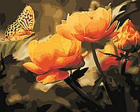 Художественный творческий набор, картина по номерам Жёлтые цветы, 50x40 см, «Art Story» (AS0351)