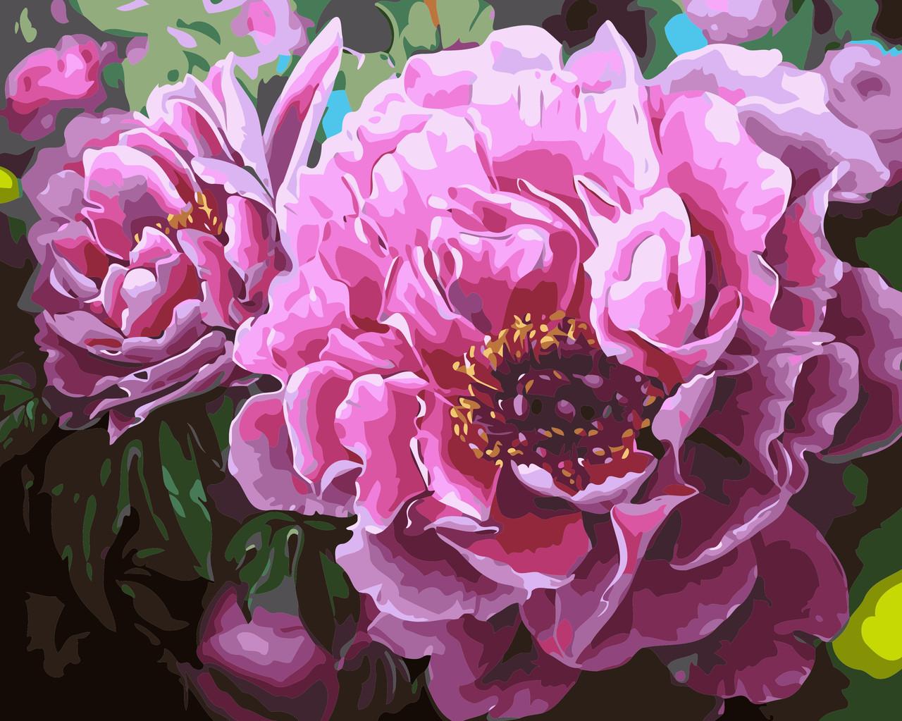 Художественный творческий набор, картина по номерам Садовые пионы, 50x40 см, «Art Story» (AS0356)