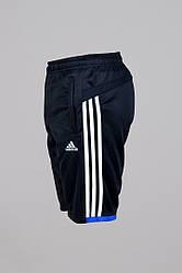 Шорты Adidas (6521-1)