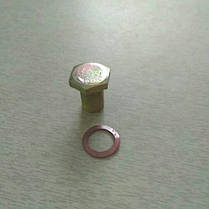 Болт слива масла R175, R180, фото 2