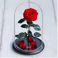 Стабилизированная роза в колбе Lerosh - De Lux 43 см, Красная - 138954