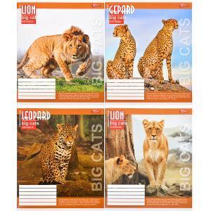 Тетрадь цветная 36 листов, клетка «Большие кошки»          16 штук               2667к