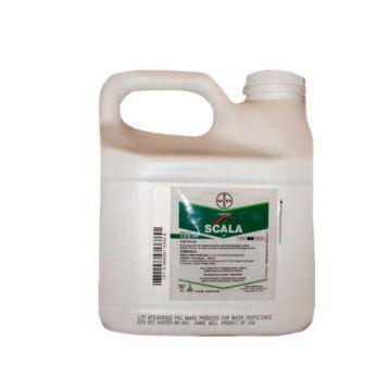Фунгицид Скала 40 % к.с. Bayer - 3 л, фото 2