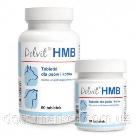 Препарат для поддержания мышц у кошек и собак Dolfos HMB 90 таблеток