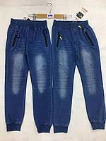 Брюки под джинс на мальчика оптом, F&D, 8-16 рр