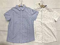 Рубашки для мальчиков Buddy Boy 8-16 лет